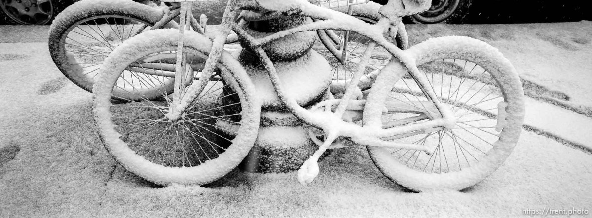 Bikes covered with snow