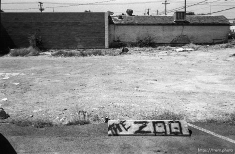 """The Zoo"" painted on parking curb with wasteland beyond."
