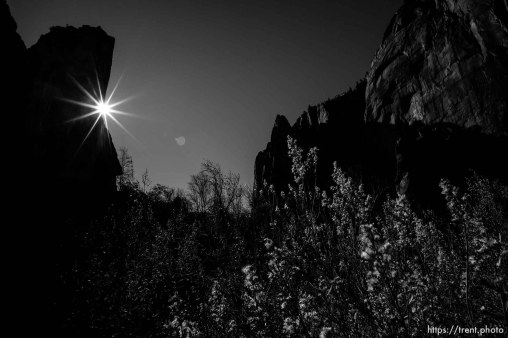 Temple of Sinawava, Zion National Park, Saturday Jan. 12, 2019.
