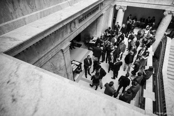 outside the house chamber, capitol rotunda , Tuesday Feb. 12, 2019.