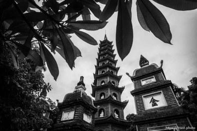 Tran Quoc Pagoda, Hanoi, August 2, 2019