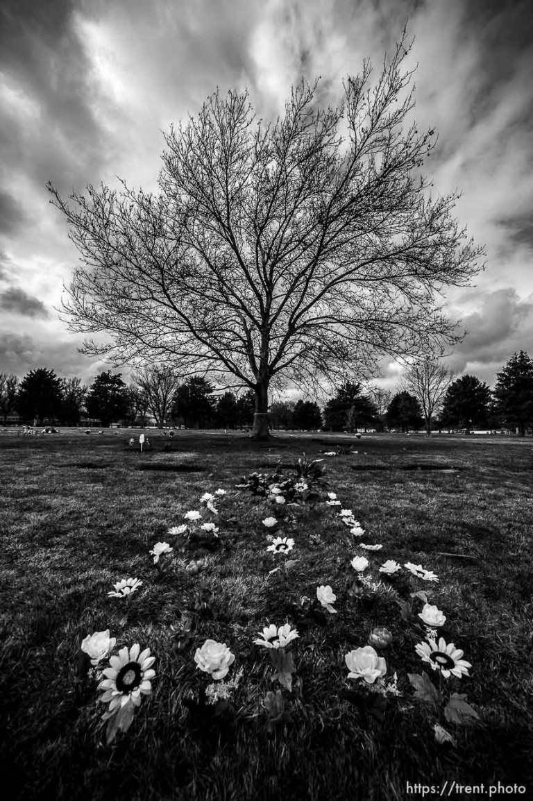 Elysian Burial Gardens