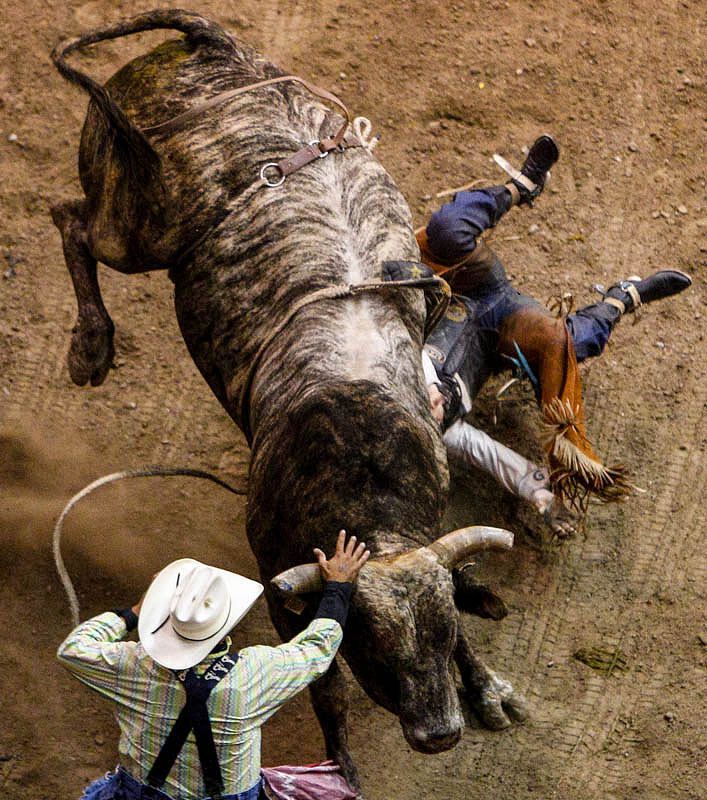 Brennon Eldred loses control in the Bull Riding competition at the Days of '47 Rodeo at EnergySolutions Arena in Salt Lake City Saturday July 20, 2013