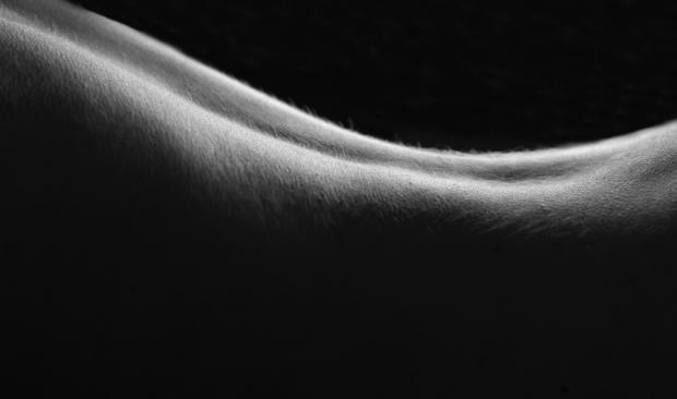Corpo di donna