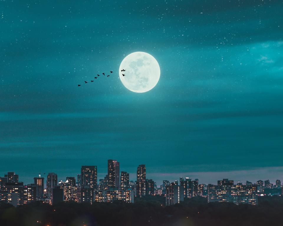 Skyline notturno con grattacieli