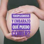 toxoplasmosis y embarazo - Toxoplasmosis y embarazo. Qué se puede comer?