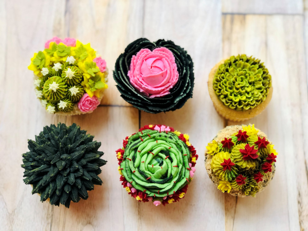Gluten Free Succulent Cupcakes Old City PA
