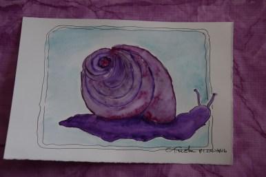 Snail 1s