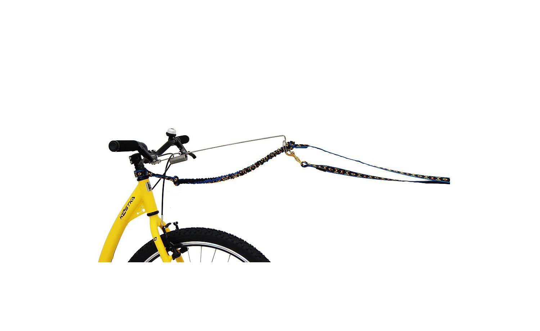 Bike Antenne Dog Paket
