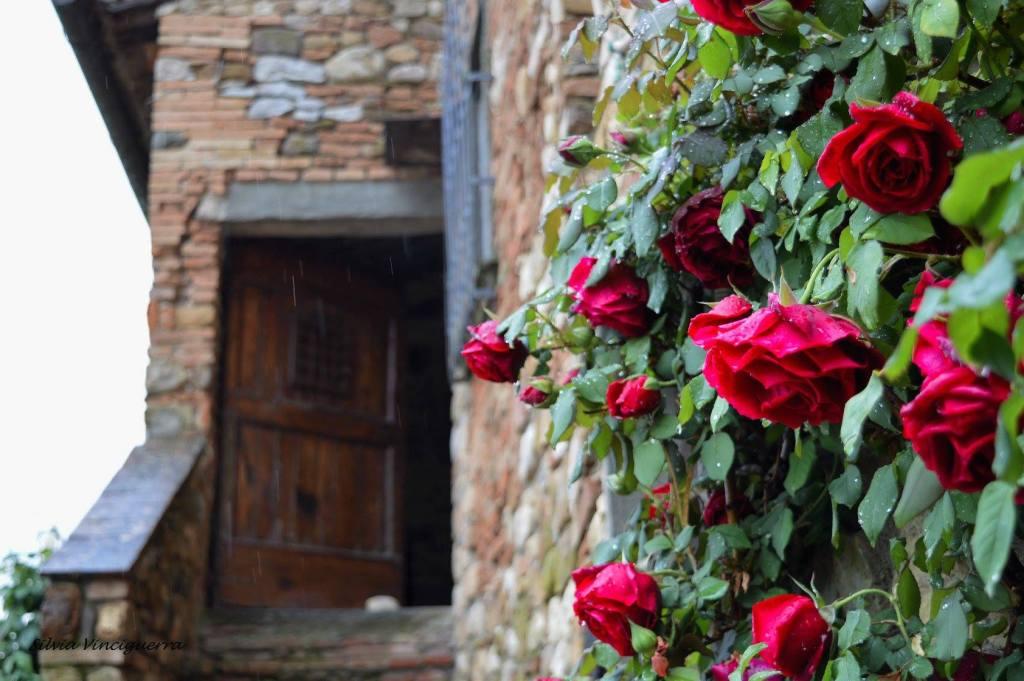 Le casette del borgo di monteriggioni sono curate nei dettagli e piacevoli da guardare, con balconcini fioriti e portoncini di legno.