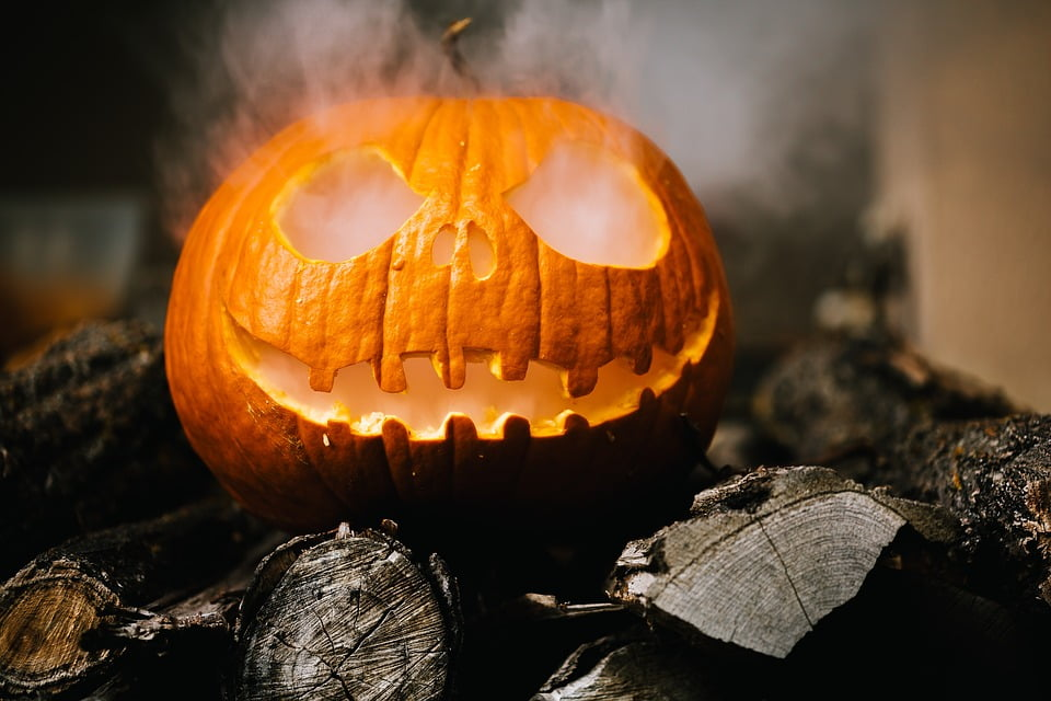 preparare una zucca per halloween, offerte halloween, trevaligie
