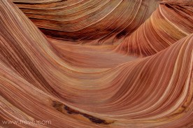 Sandstone formations at the Wave
