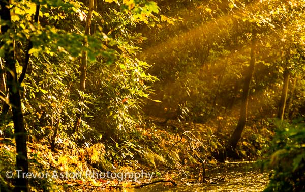 Love the Autumn – Do Photography!