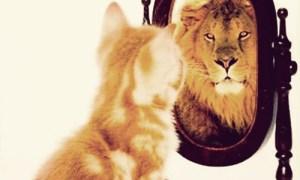 increase-confidence