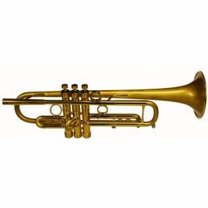 Bach Taylor Hybrid Trumpet 3 1