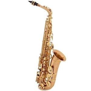 Yanagisawa AWO2 Alto Saxophone 1 1