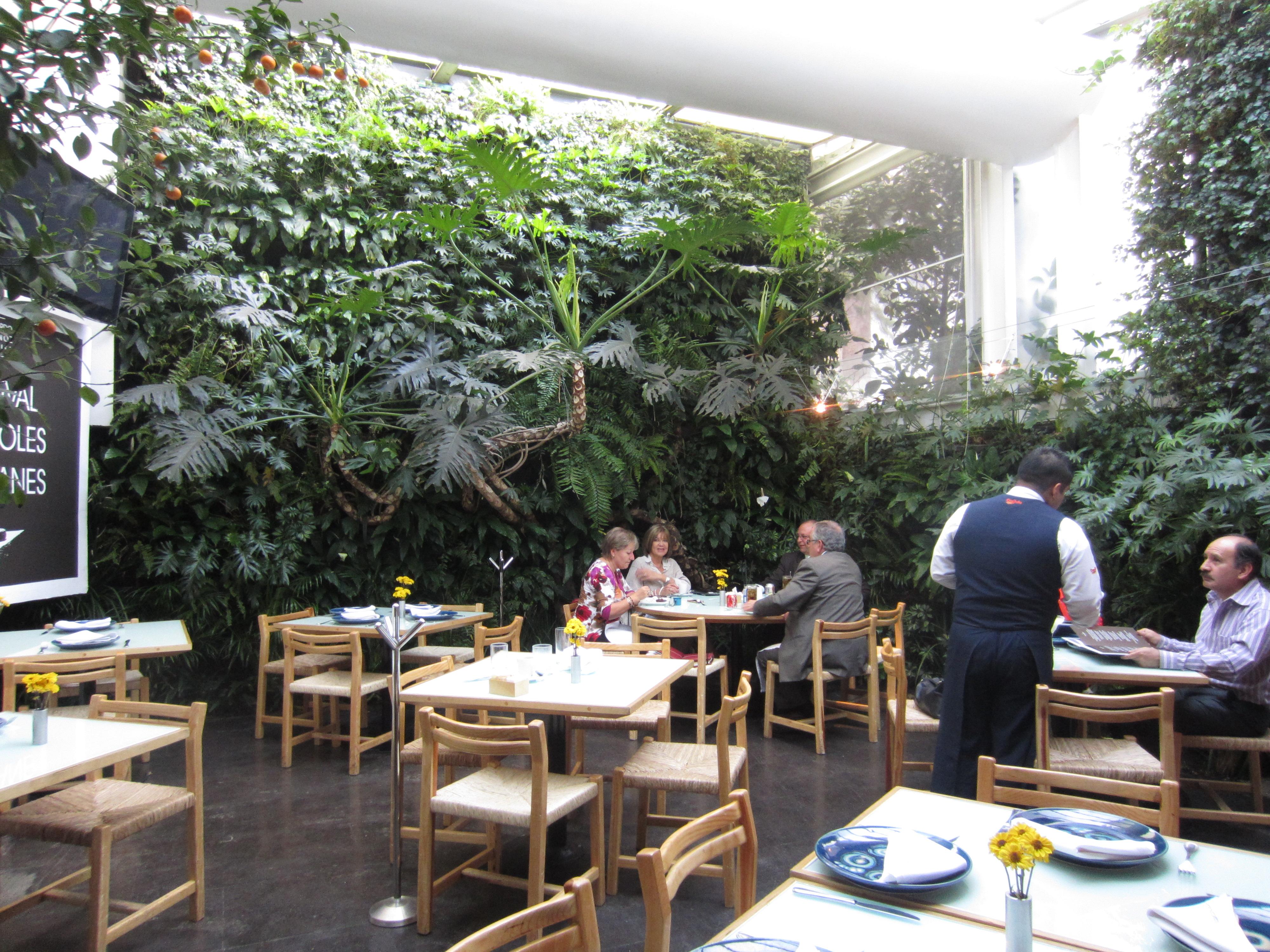 Restaurants Azul Condesa Mexico City  Trevs Bistro