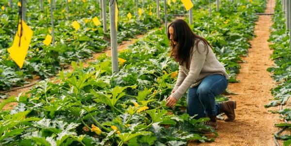 agricultora-almeria