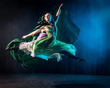 The faerie princess dressed in a beautiful green gown leads the other dancers throughout the ballet.