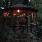 Backyard music: The Gazebo Concerts turn 5