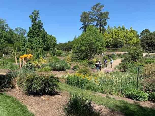 Visitors walking on path at Juniper Level Botanic Garden
