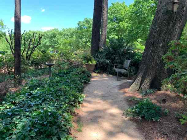 Path and bench at WRAL Azalea Gardens in Raleigh