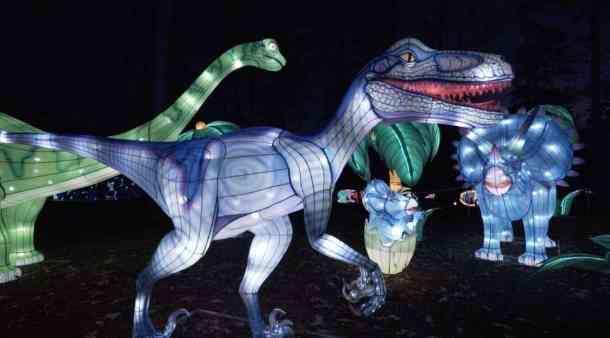 Large illuminated dinosaurs at North Carolina Chinese Lantern Festival in Cary