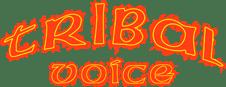 Tribal Voice - Logo