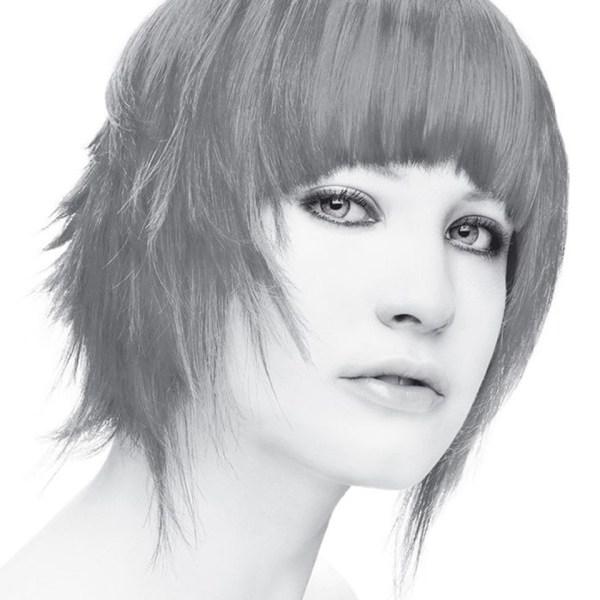 Stargazer Silver Hair Dye