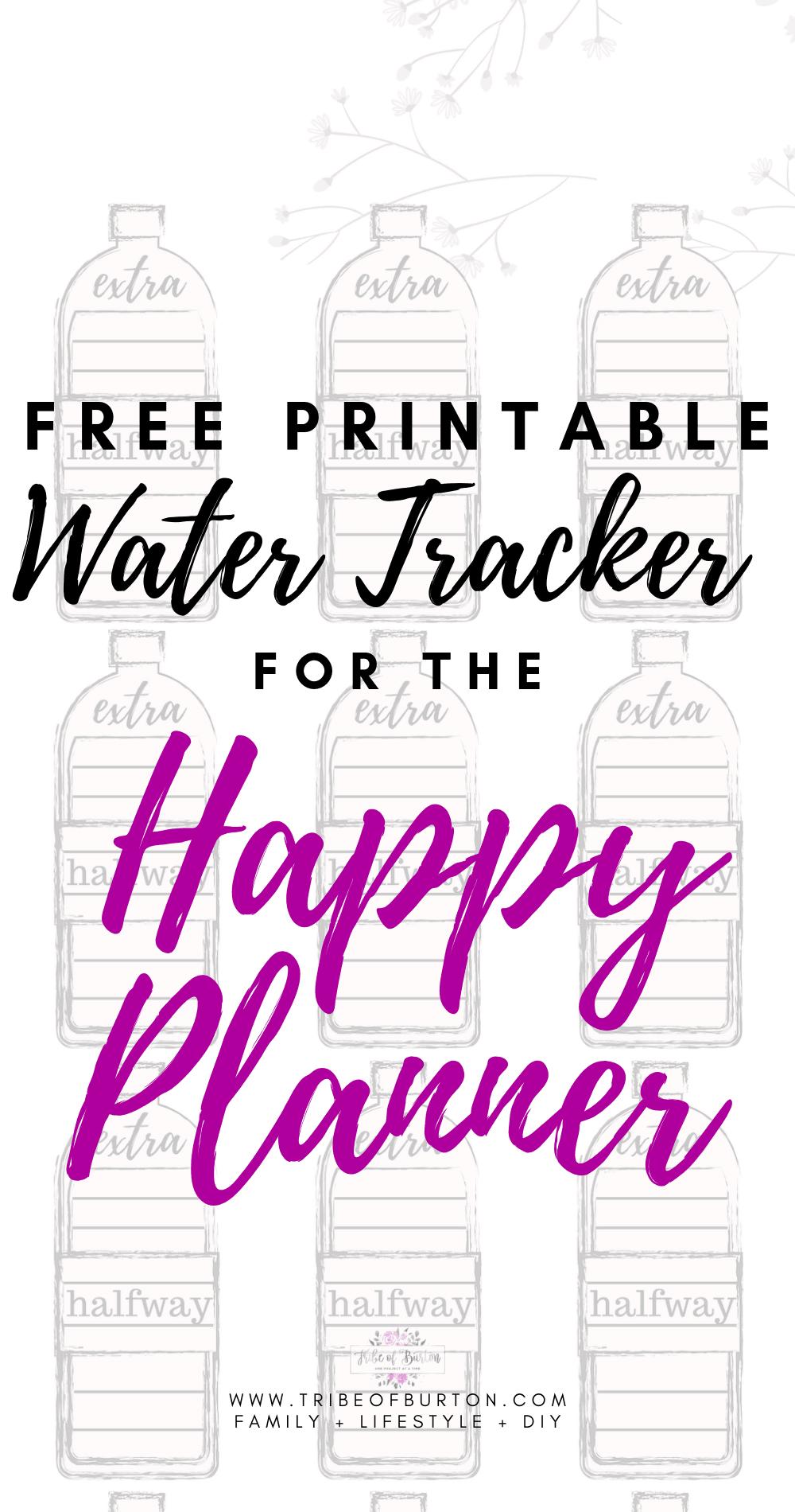 photograph regarding Printable Water Tracker identify How I Monitor My H2o - Obtain No cost Printable - tribe of burton