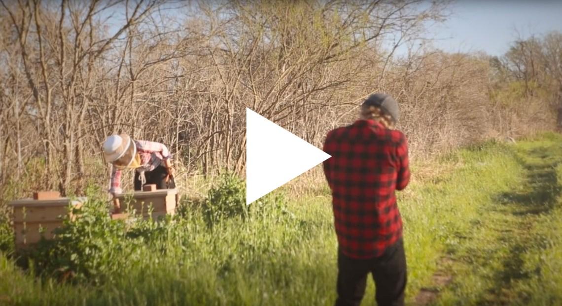 Behind the Scenes: The Beekeeper