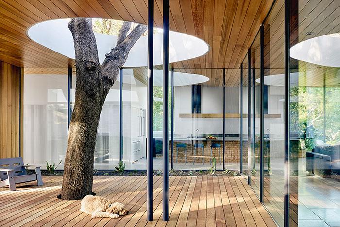 alterstudio architecture alter austin