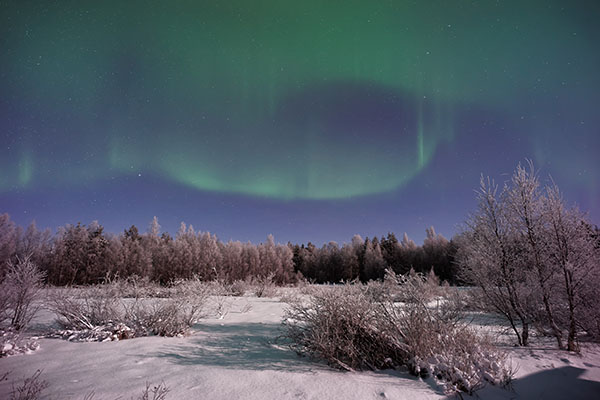 Travel Pick: Fairbanks, Alaska