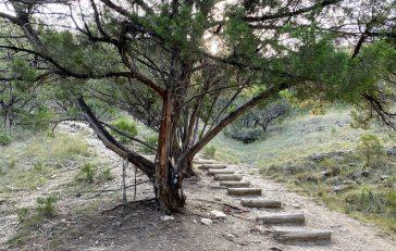 Austin Hiking: River Place Nature Trail Is a Rigorous Climb