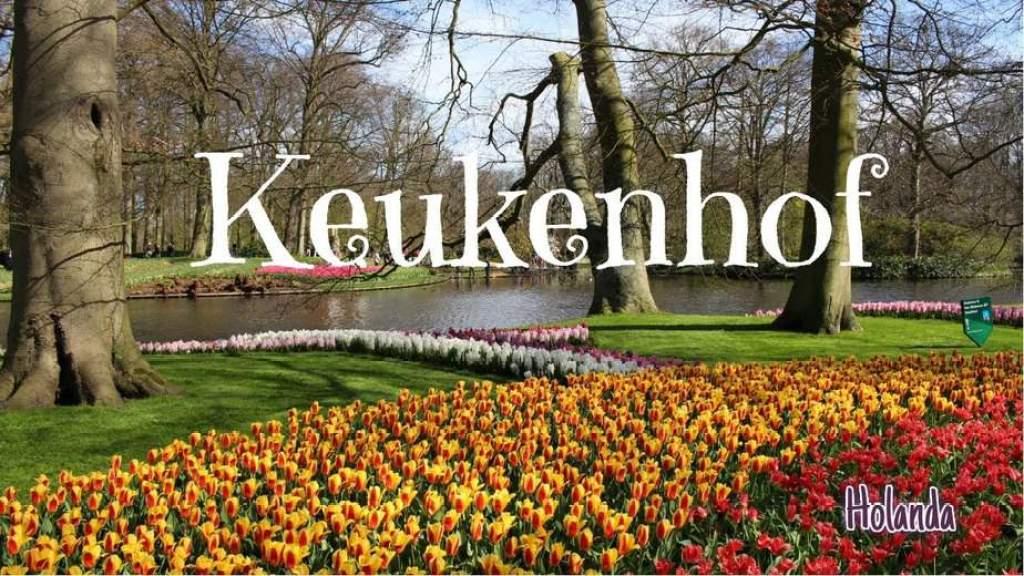 5 Dicas Para viajar na Primavera holanda