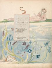 William_Blake_-_The_Poems_of_Thomas_Gray,_Design_9,_-Ode_on_the_Death_of_a_Favourite_Cat.-_-_Google_Art_Project
