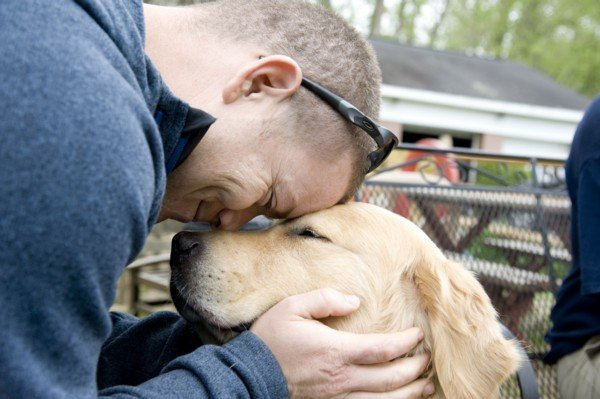 Coming Soon to a Funeral Home Near You:  Canine Comforting