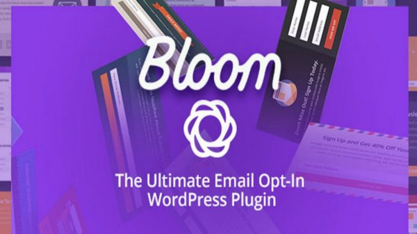 WordPress Bloom plugin