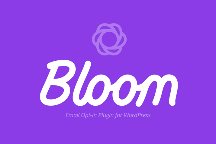 Bloom Email Subscribers