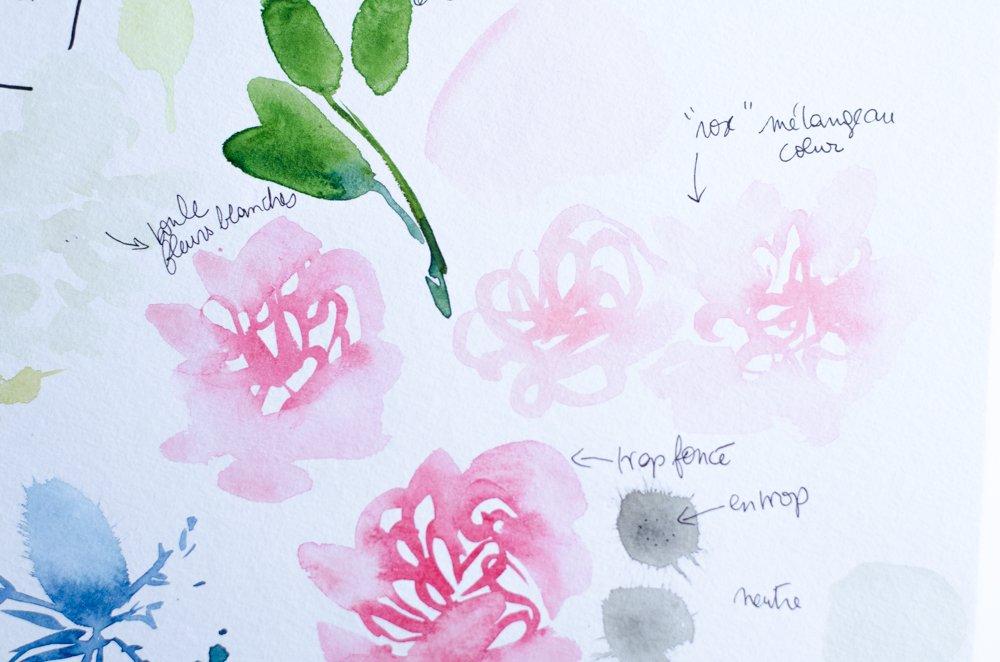 fleurs aquarelle nuancier-21