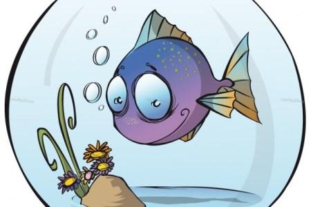 poisson bocal