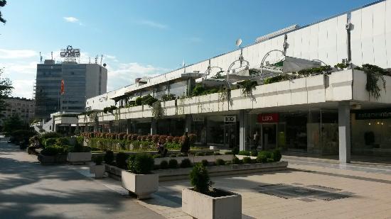 СДК: Околу 5000 евра е штетата од уништениот зелен покрив на ГТЦ