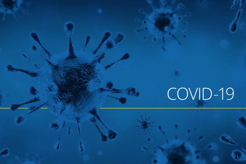 Experţii, informaţiile şi pandemia
