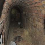 Foto 1: Galeria inacabada del refugi antiaeri núm. 0173 del carrer del Ripollès, districte de Sant Martí (Foto: Servei d'Arqueologia de Barcelona)