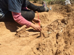 Excavació de l'enterrament localitzat a la Nou de Gaià