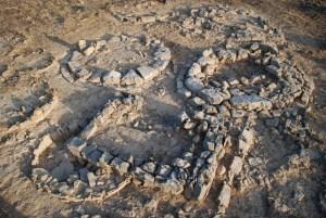 Vista general dels túmuls intervinguts en curs d'excavació.