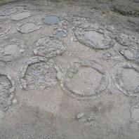 1. Vista general de la necròpolis tumulària d'Almenara un cop acabada la campanya d'excavació el mes de setembre de 2017 (Foto: Iltirta Arqueologia SL)