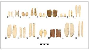 2. Peces recuperades a la campanya 1983 (1 i 2-mitja lluna; 3-gratador; 4-Denticulat; 5-Truncatura; 6-Gratador; 7-Geomètric; 8-Lamineta denticulada; 9-Lamineta; 10-Làmina; 11-Làmina amb cop de burí; 12-Làmina amb retoc simple; 13-Perforador; 14-Denticulat; 15- Làmina amb cop de burí; 16-Lamineta). Cronologia del Neolític Antic (Font: SAPPO-UAB)