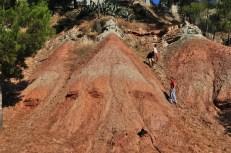 Figura 7. Dipòsits lacustres (calcàries i guixos blancs) i de ventalls al·luvials (lutites i gresos vermells) del Miocè inferior al jaciment de la Costablanca (Castellbisbal). L'edat d'aquests sediments seria d'uns 18-17 Ma.