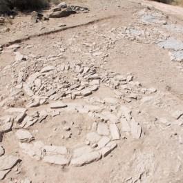 3. Vista general del sector 2. Fotografia: Iltirta Arqueologia